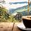 Thumbnail: Café  Molido Grueso Origen Bolivia