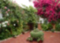 patios cordobeses_barrio nuevo.jpg