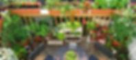 hueerta-balcon-e1519833719655.jpg