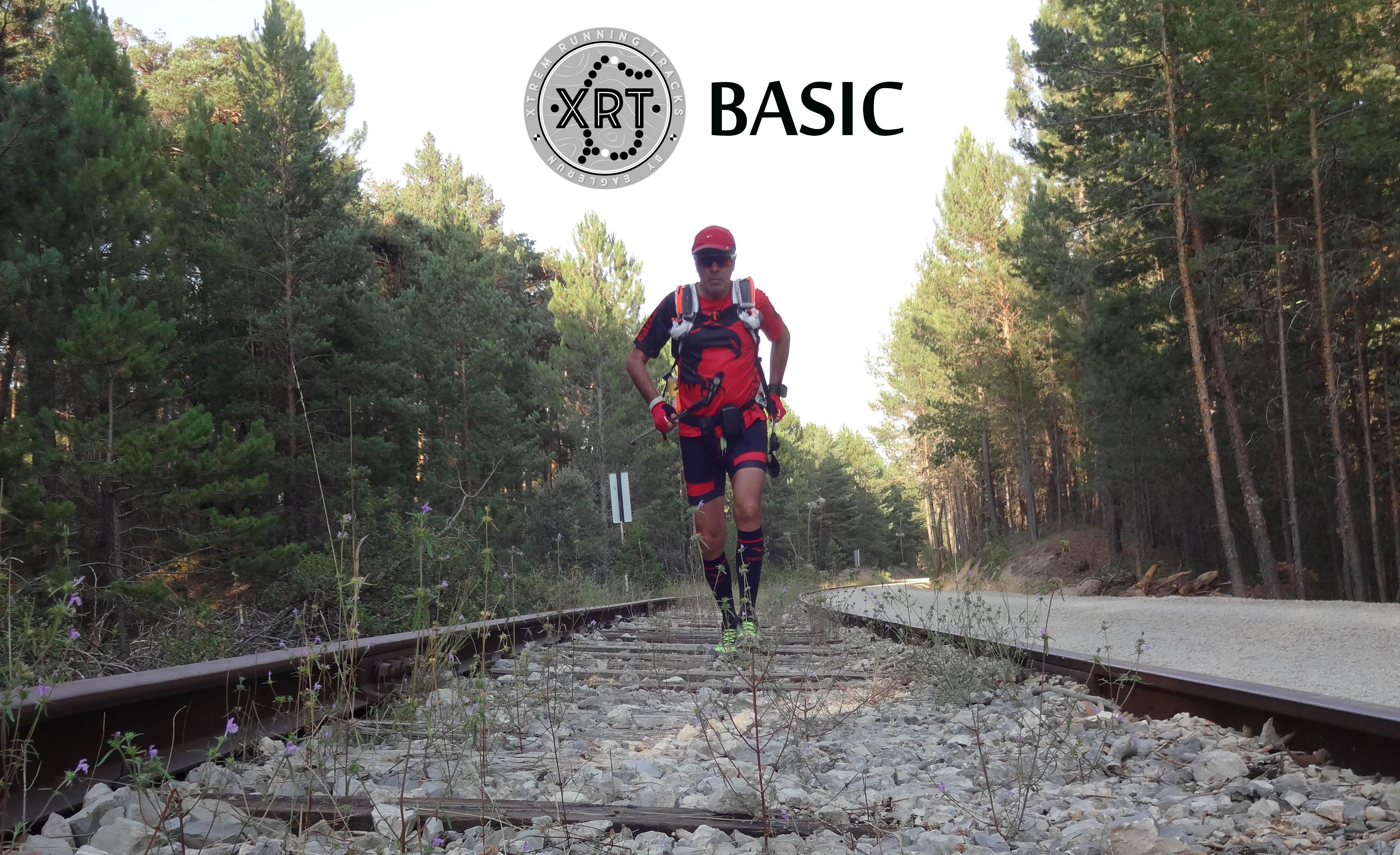 XRT Wix 01 Basic Ok 2