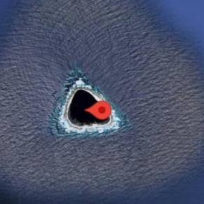 """Detectan """"agujero negro"""" en el océano Pacífico a través de Google Maps"""