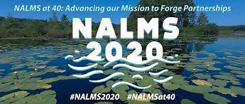Mackworth Presents Poster at 2020 North American Lake Management Society Conference