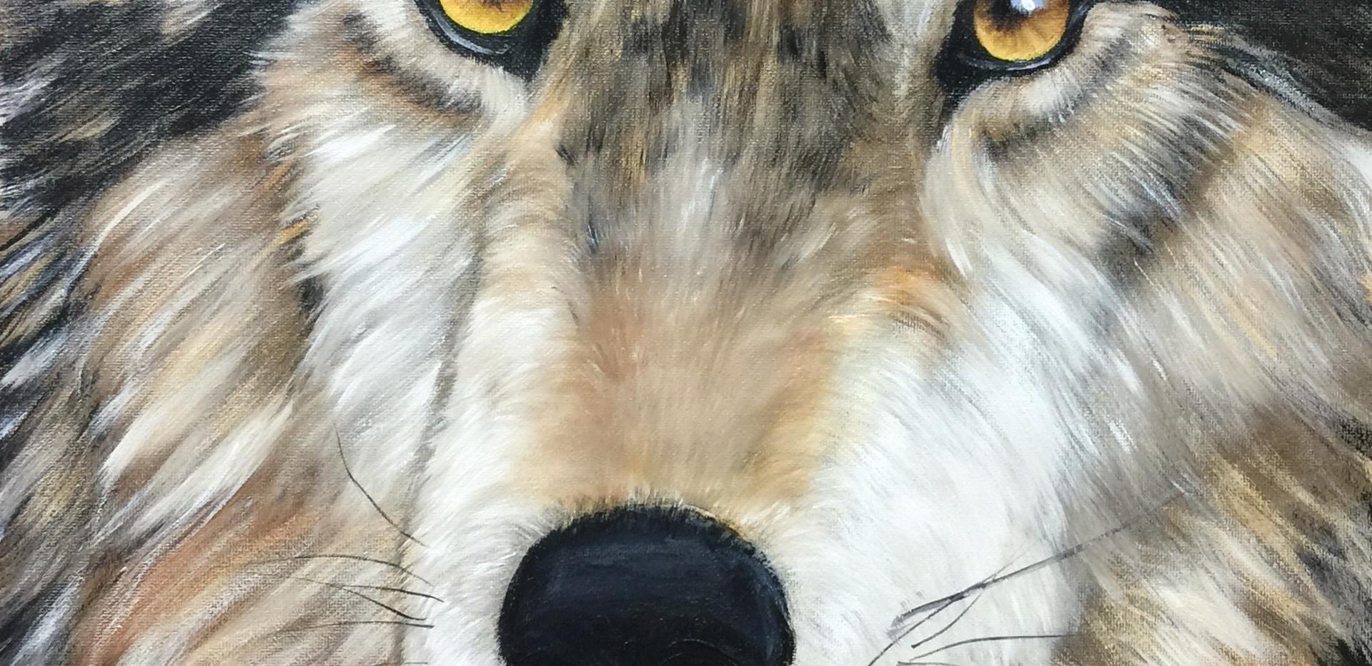Wolfsgesicht