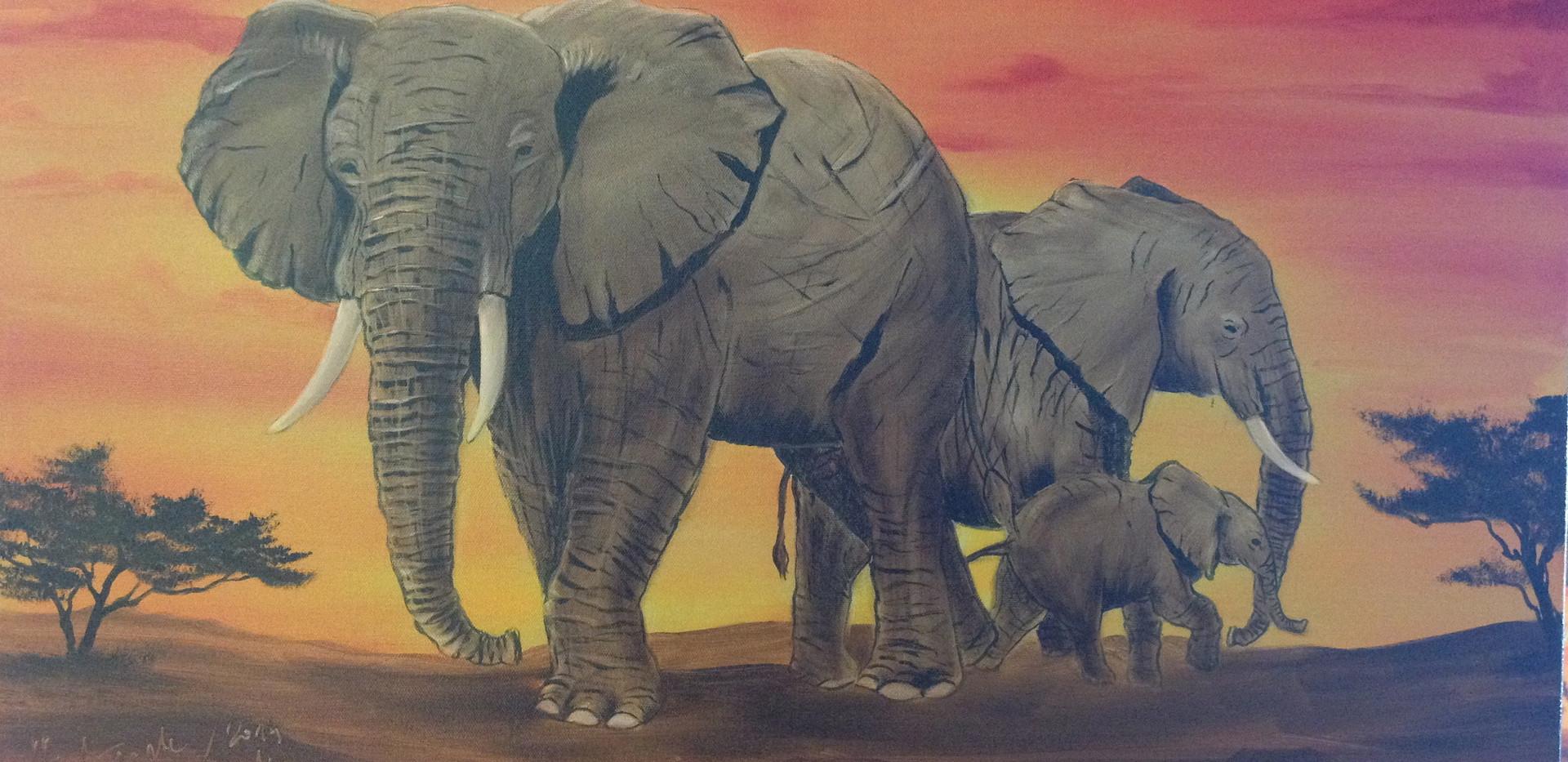 Elefanten im Abendrot.jpg