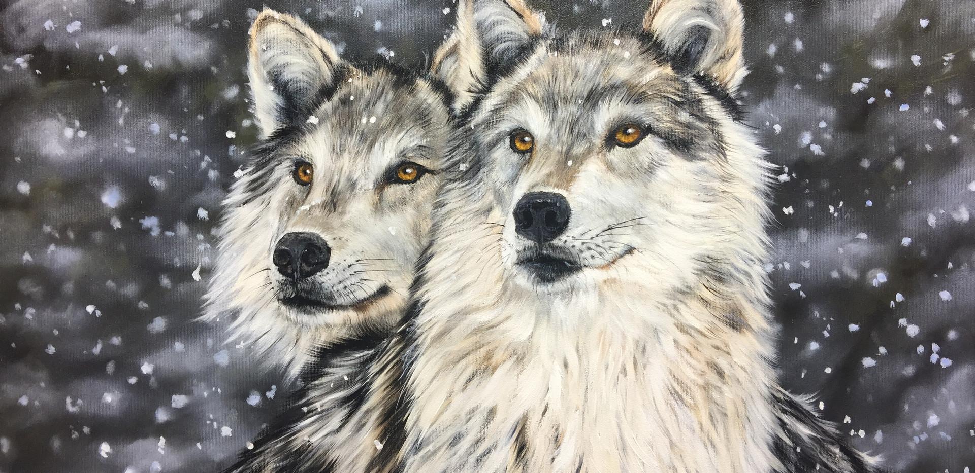 Wolfspärchen.jpg