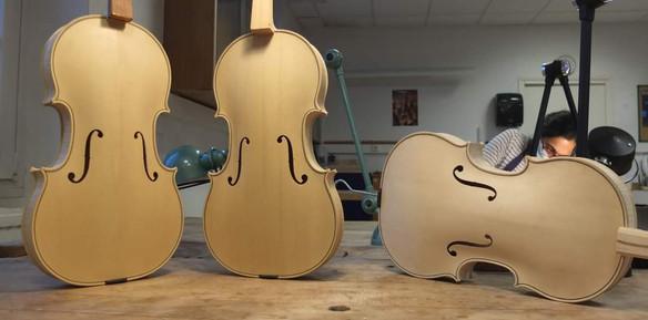 Altos et violons en blanc
