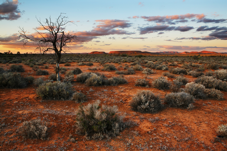 landscape004
