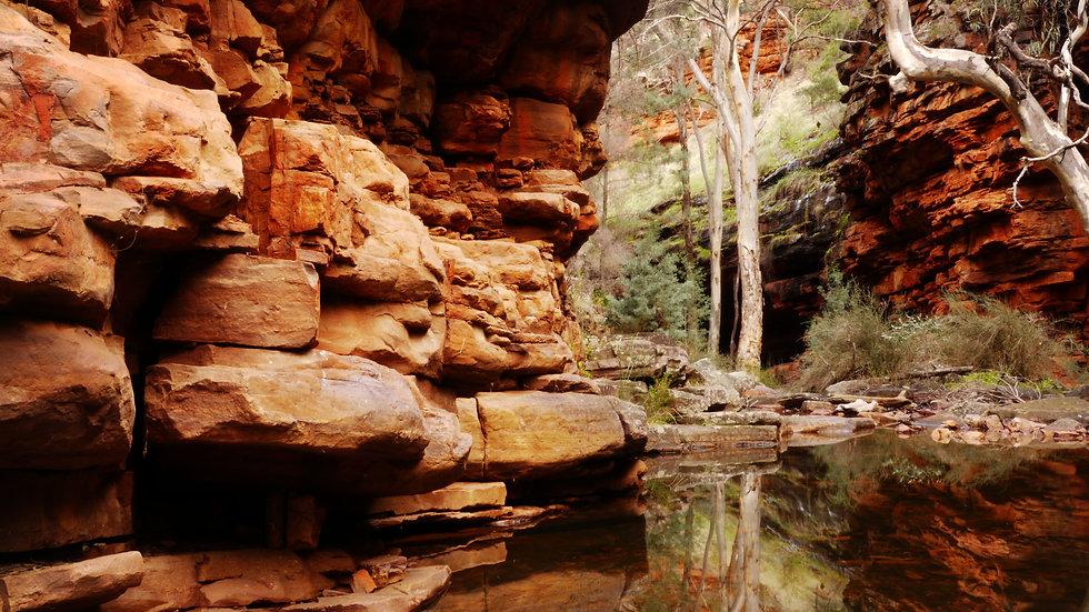 Alligator Gorge Reflections