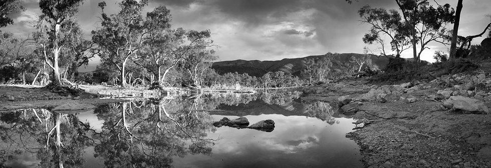 Reflections at Aroona Creek
