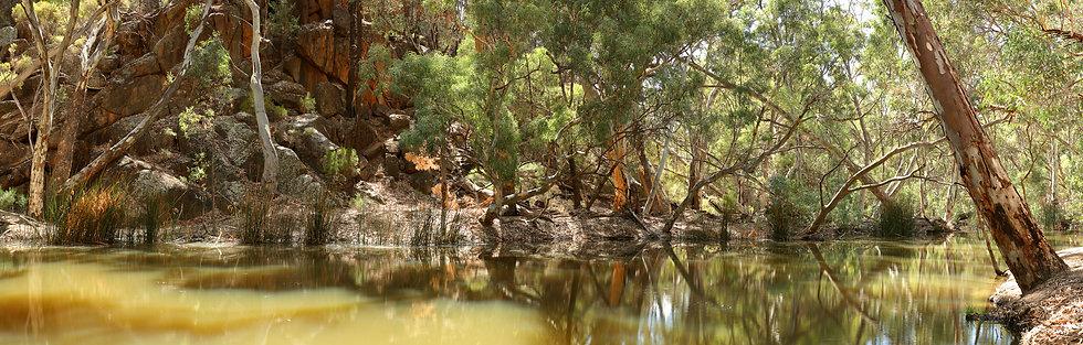 Wilpena Creek