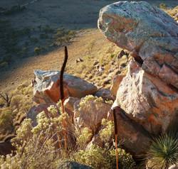 Rocks near the Ridge Top