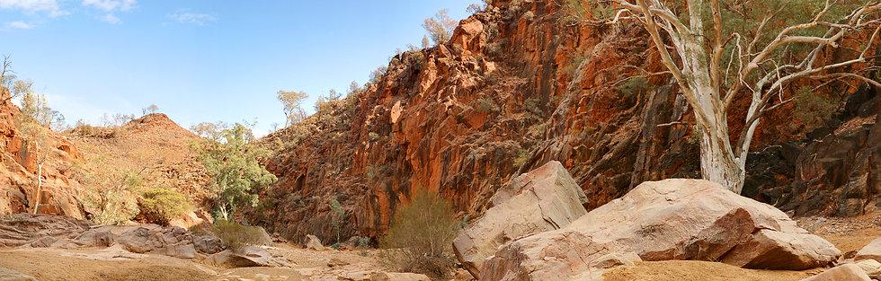 Nooldoonooldoona Creek