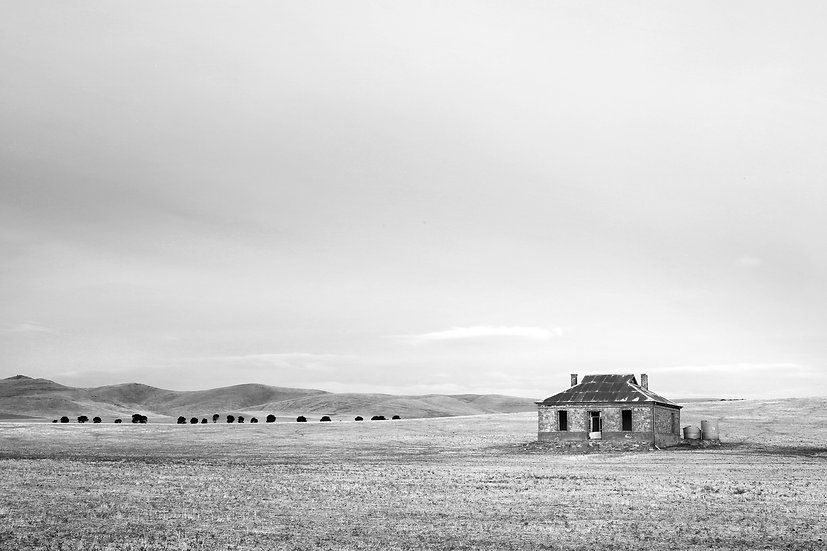Burra Ruin in Black and White