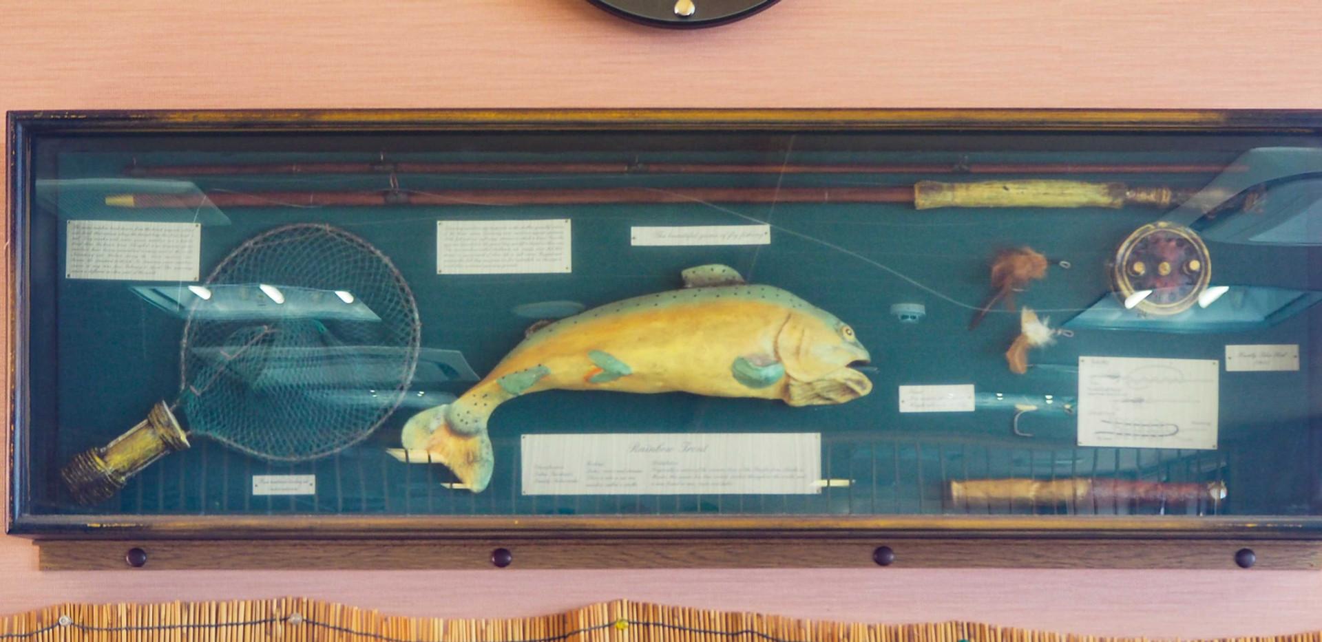 9_fish.jpg