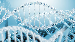 PCR DIGITALE