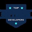 Top Software Developers in California.pn