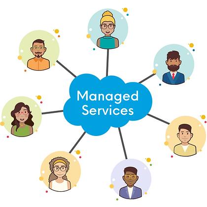 Salesforce-Managed-Services-Team-Apphien