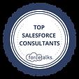 Forcetalk-Top-Salesforce-Consultants-App