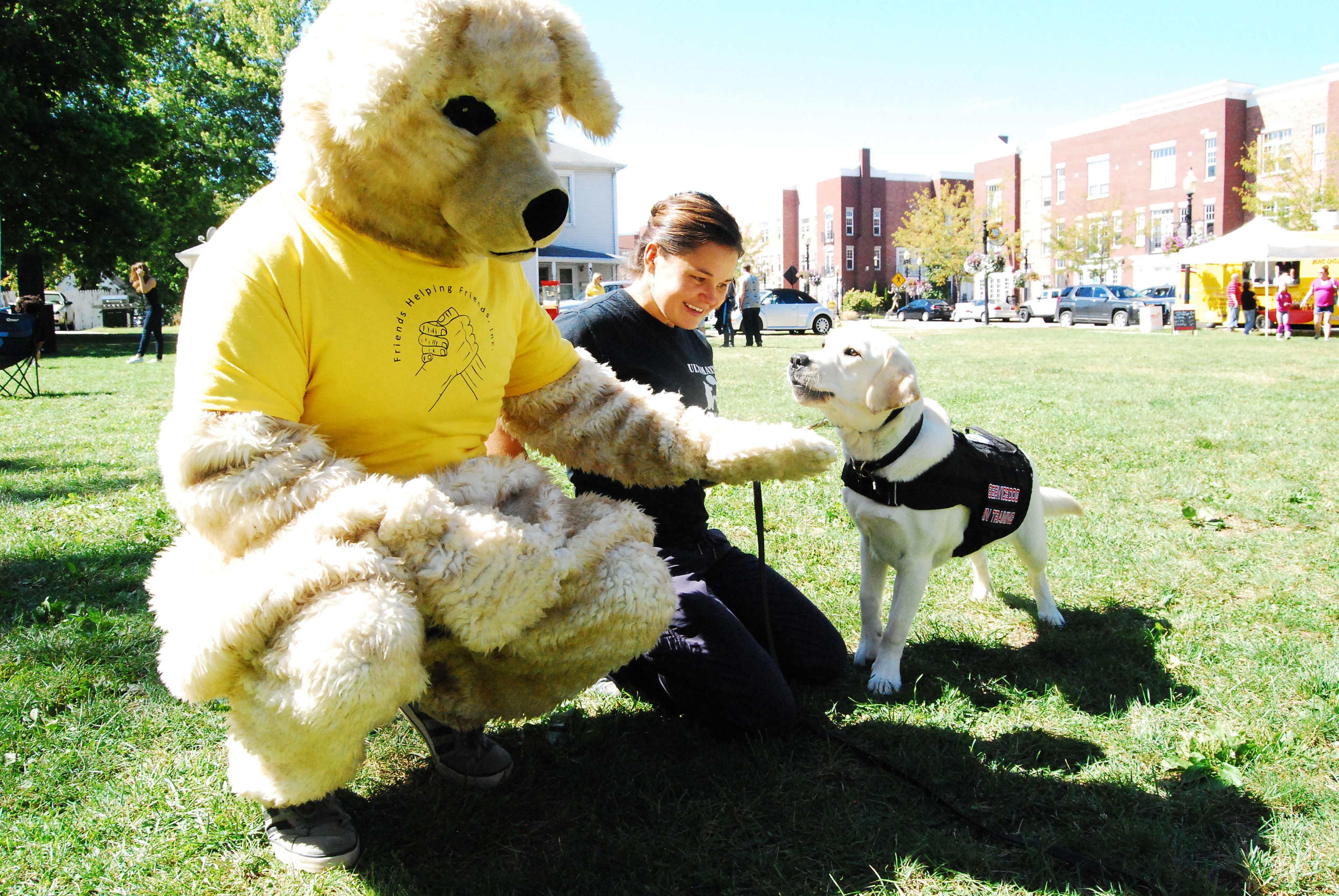 Sunny the mascot meets Sunny the dog