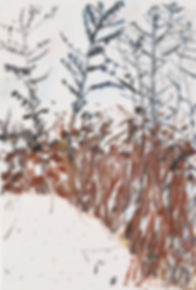 winter17.jpg