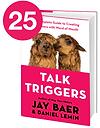 25TalkTriggers.png