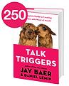 250TalkTriggers.png