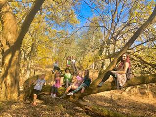 group in tree.jpg