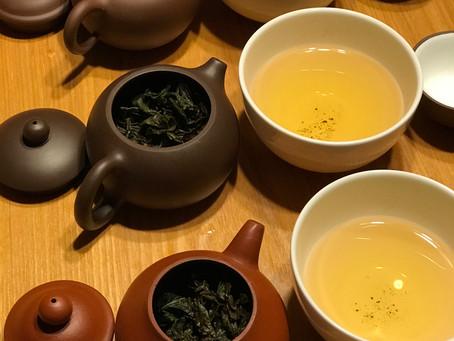 茶壺 飲み比べ