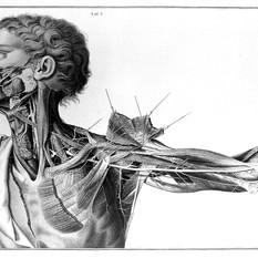 A._Scarpa,_'Sull'_aneurisma',_1804_Wellc