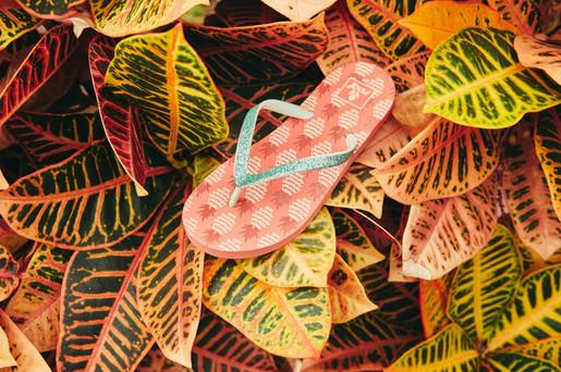 Fotoshoot in Vlindertuin Vlindorado