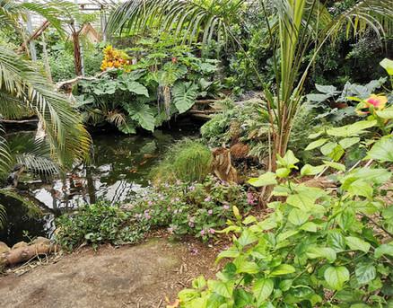 Vlindertuin Noord Holland Schagen