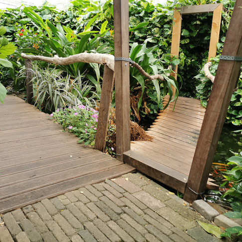 Vlindertuin Vlindorado Waarland Noord Ho