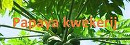 papaya bijgesneden met logo.jpg