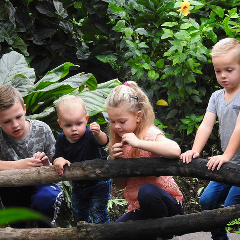 Foto via FB ontvangen van Tona van der Veldt-Venema 4 kleinkinderen bij vijver.jpg