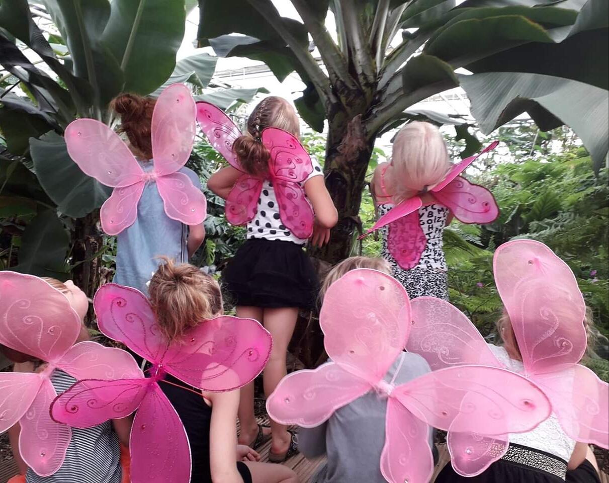 kinderfeestje in Vlindertuin Vlindorado