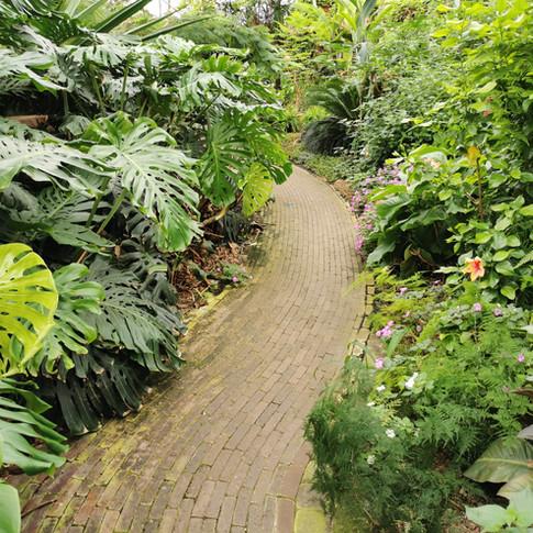 Vlindertuin Vlindorado Noord Holland loc