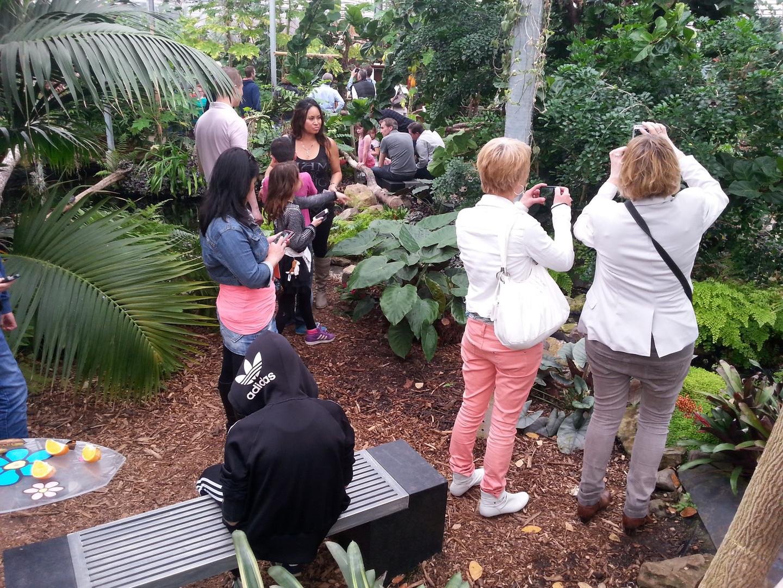bezoekers in de vlindertuin (1).jpg
