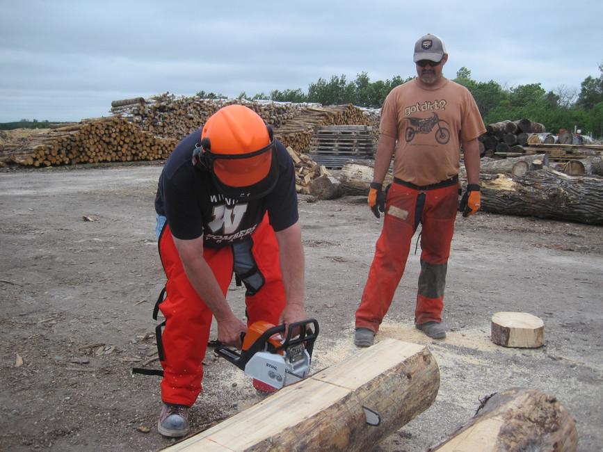 chainsaw safety & handling
