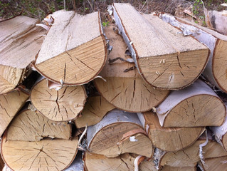 The Two Ingredients Needed To Season Firewood