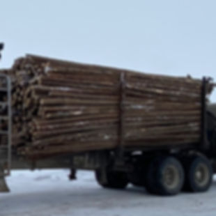 spruce rails.jpg