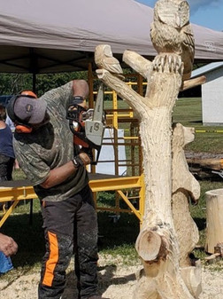 Chainsaw carve owl