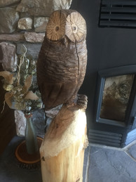 The finished owl