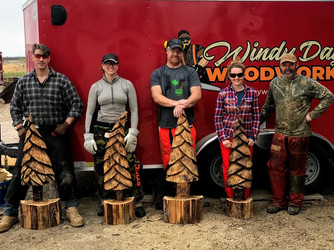 Windy Day Woodworks Chainsaw Carving Instruction