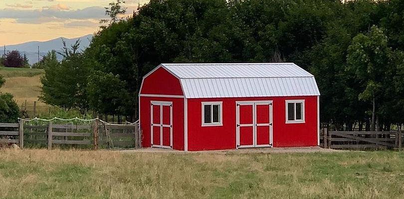barn life.jpg