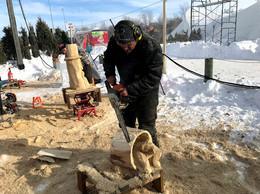 Chainsaw Carver Darcy Birnie