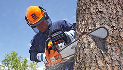 chainsaw safety & handling
