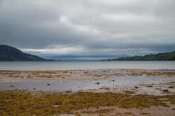 isle-of-arran-beach