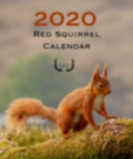 Squirrel Cover Draft.jpg