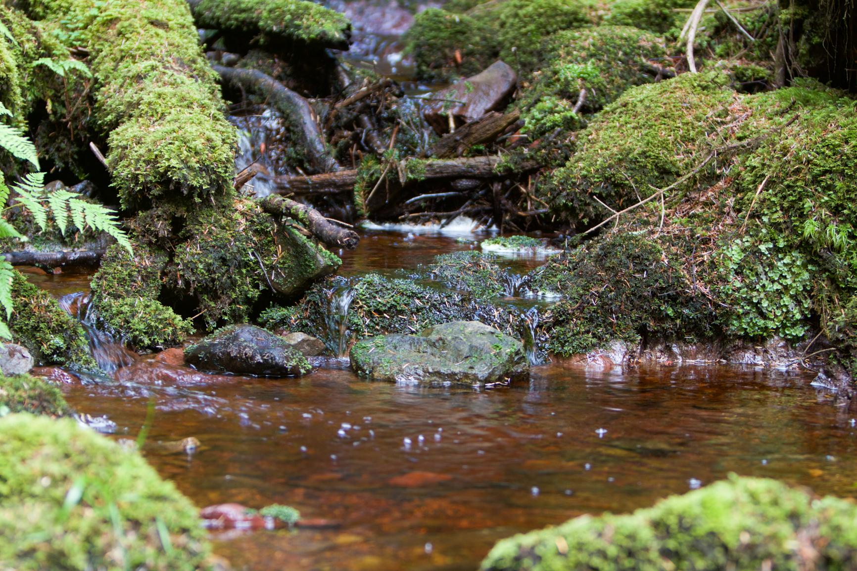 isle-of-arran-stream