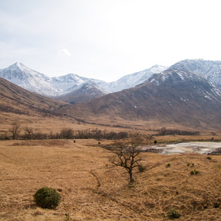 Glen Etive_Mar 2017-4.jpg